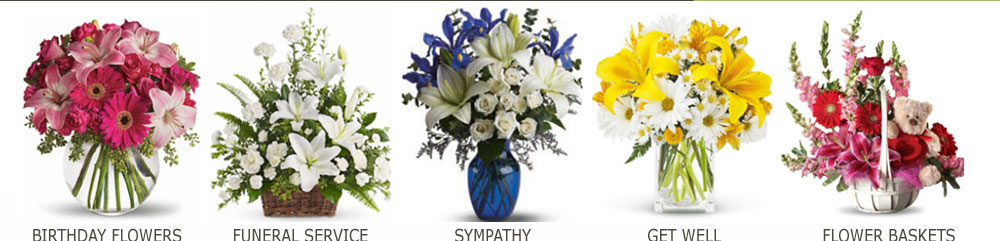 plants to send for sympathy